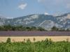 gorges-du-verdon-019